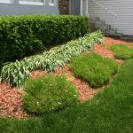 late-spring-trimming-mulching-before-2